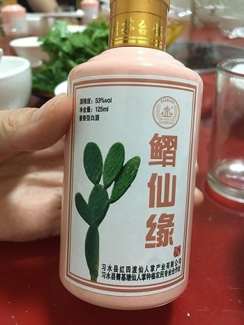 サボテン白酒2