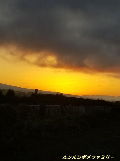 朝焼け 浅間山麓