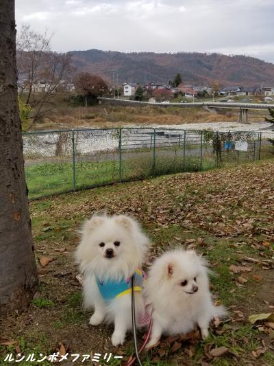 秋 川と里山