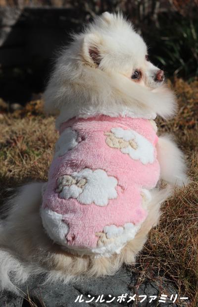 ピンクの羊 後ろ