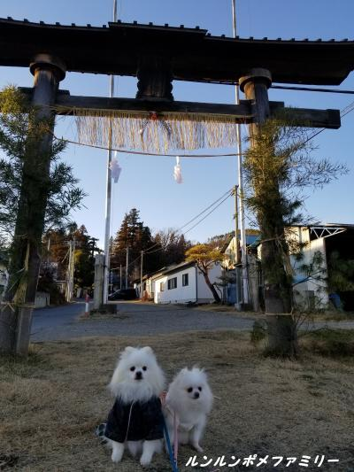 飯沼神社 鳥居