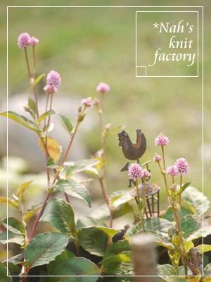 garden2018-136.jpg