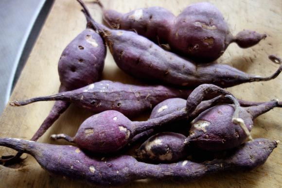 サツマイモのハチミツ檸檬煮02