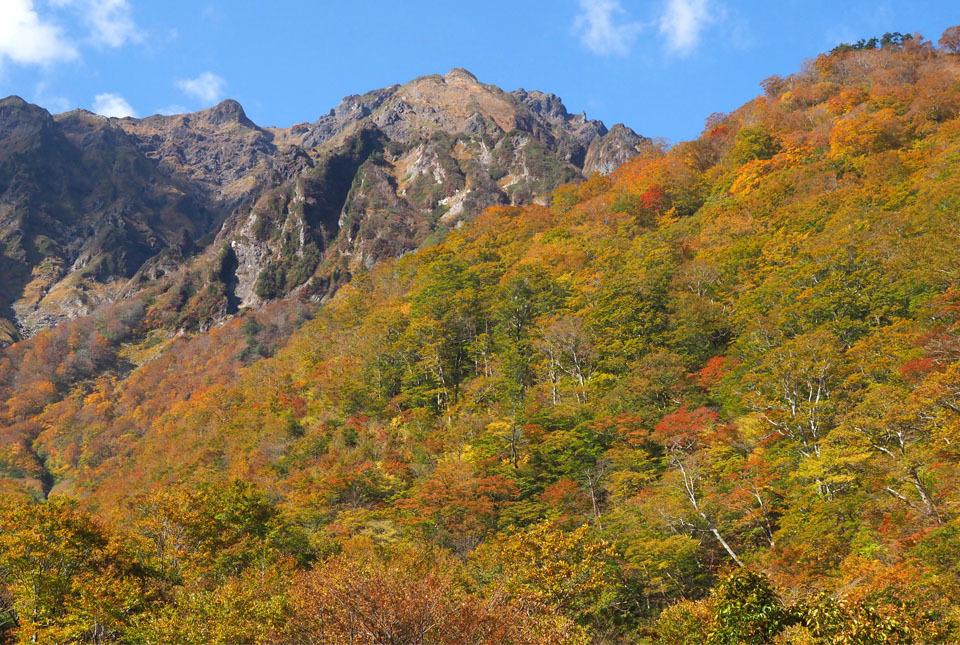 5249 マチガ沢からの谷川岳 960×645