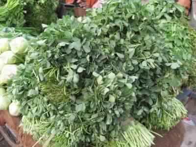 コロハ種子、またの名をフェニュグリーク、インドではメティ