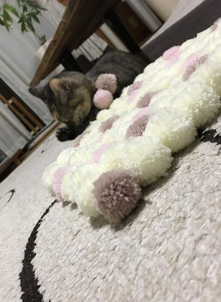 にゃんと猫の日にゃぁ〜