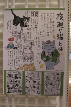 はIMG_0901 - コピー