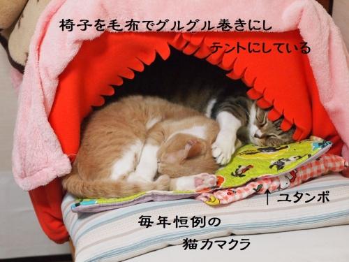 猫カマクラ ネコカマクラ 猫テント