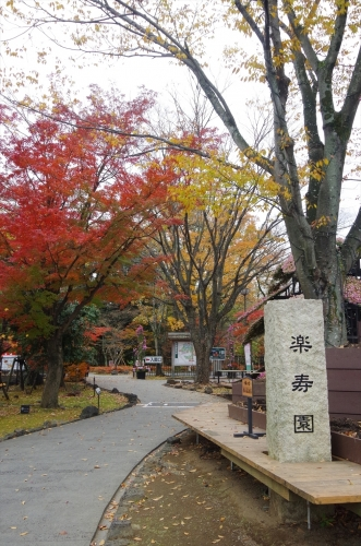 三島にて 楽寿園
