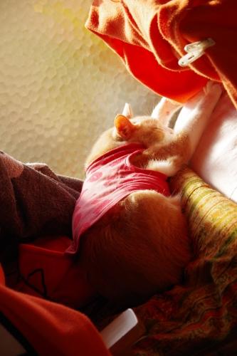 うー兄ちゃん 猫服 ニャンコ服