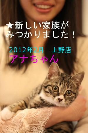 アナちゃん201202-02