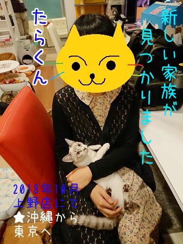たらくん20181015-01