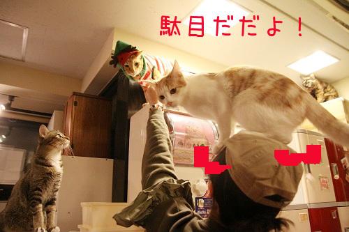 ぶちくり20180106-03