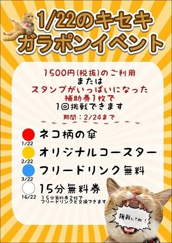 猫の日イベント201902