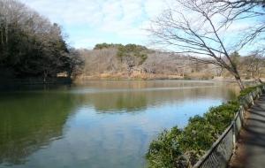 190125_八丁湖