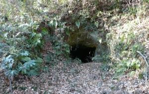 190125_黒岩横穴墓群4
