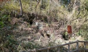 190125_黒岩横穴墓群3