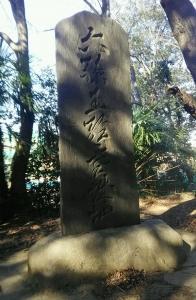 20190218_伝源