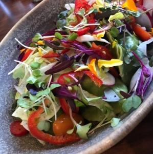 野菜の水餃子