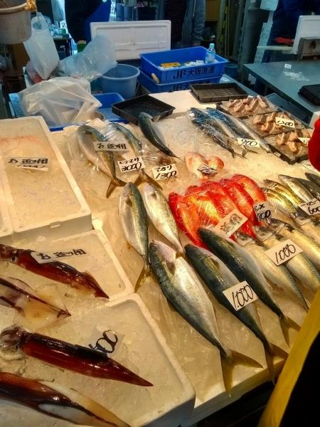 盛りだくさんの一日(泉佐野漁港市場)
