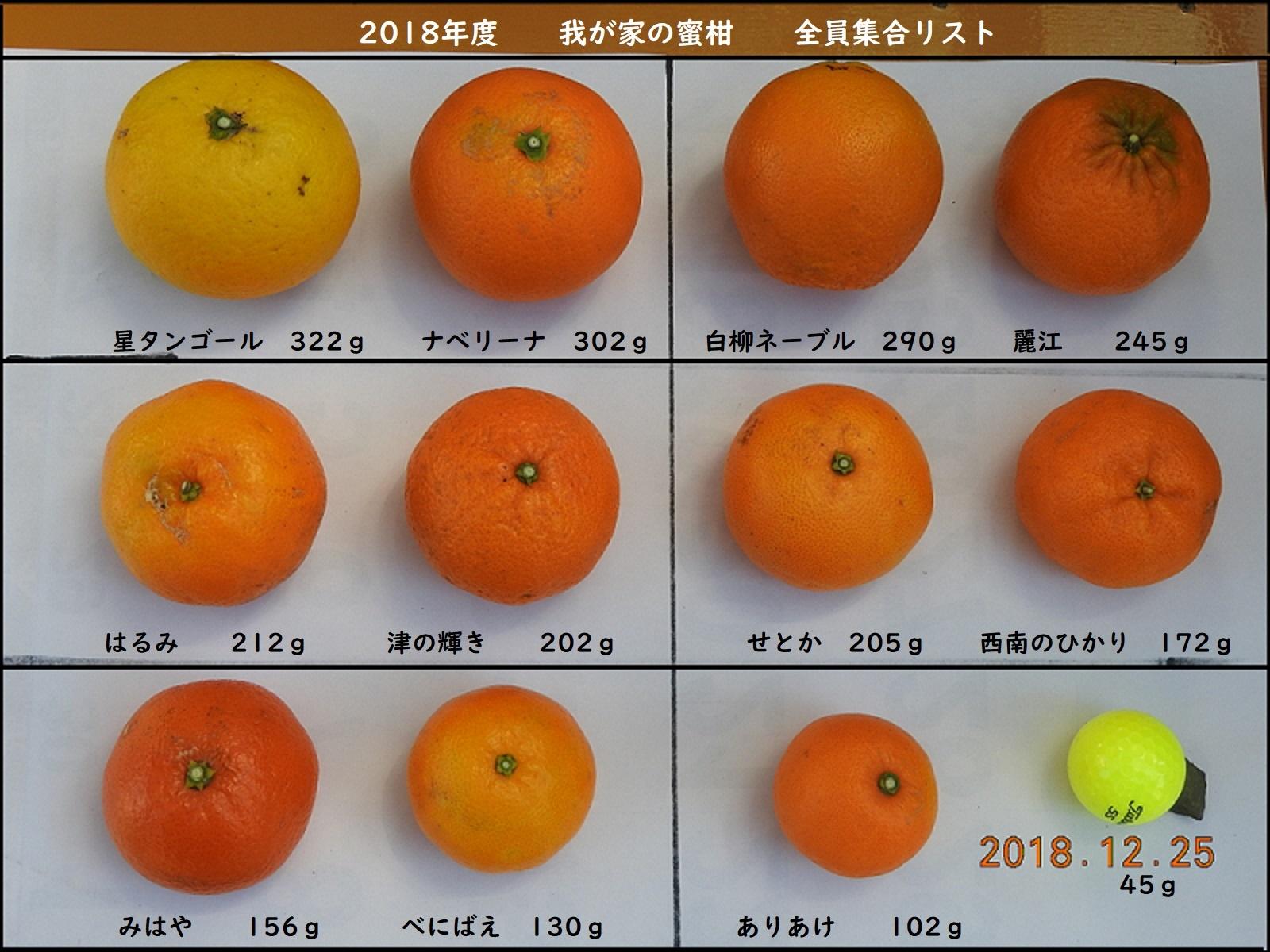 かいせいばんDSCN3320