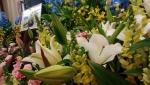 11月8日お花(3)