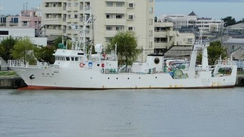 新潟県 水産海洋研究所漁業指導船「越路丸」