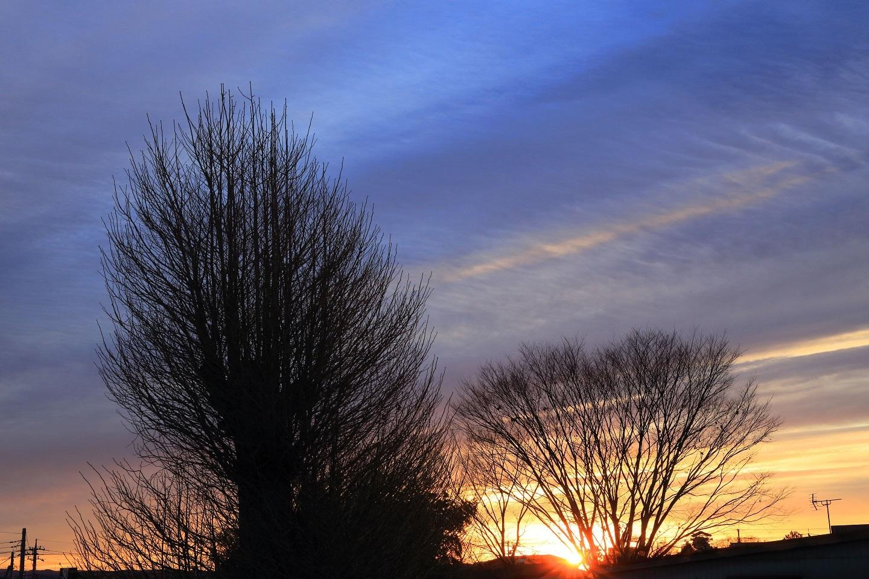 ブログ 寒波の中の日の出.jpg
