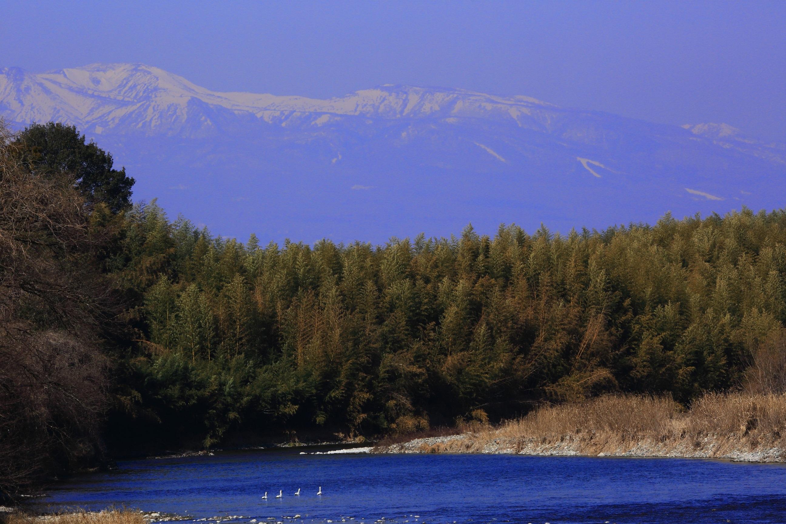 ブログ 白鳥と那須岳と那珂川.jpg