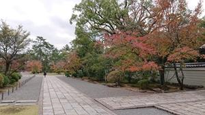 秋色の広隆寺