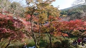 醍醐寺境内の紅葉その3