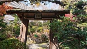 千仏院の庭園の門
