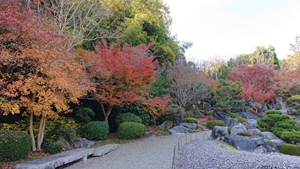 浄土庭園の紅葉その3