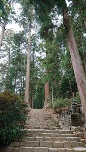 奥の院に向かう階段その1