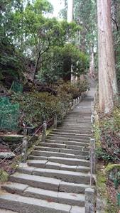 奥の院に向かう階段その2