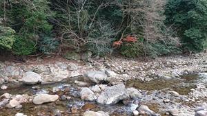 室生寺周辺の渓谷