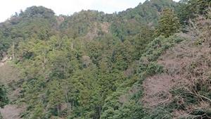 室生寺周辺の山