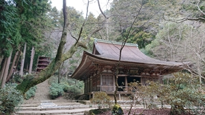 室生寺本堂と五重塔