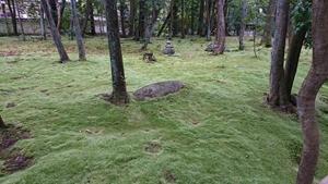 秋篠寺の苔庭その2