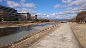鴨川の散歩道