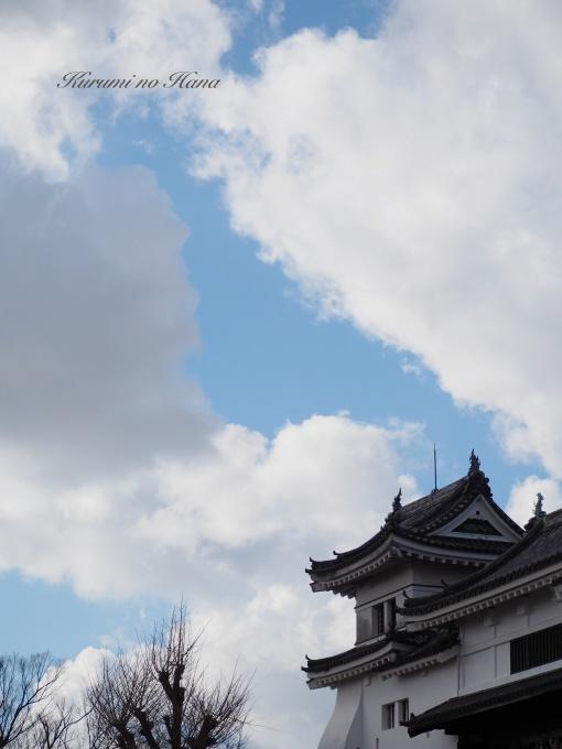 190104_和歌山城