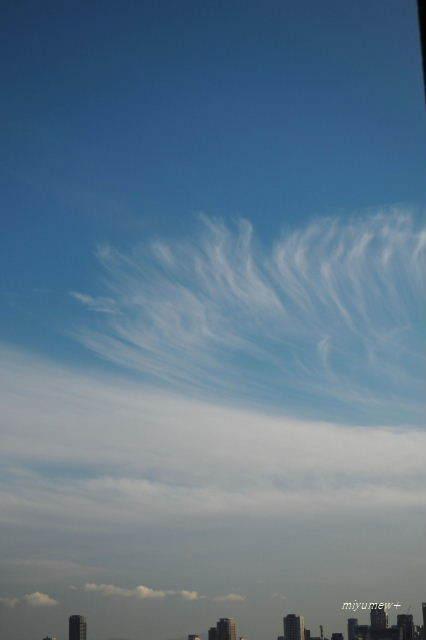 薄雲ひらひら181210