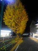 2018/12/8東林間駅前