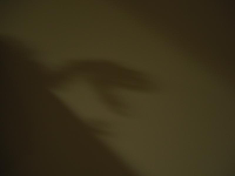 17095702.jpg