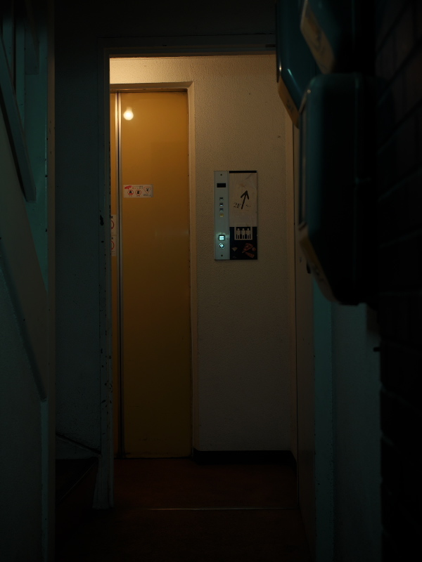 P1647597.jpg