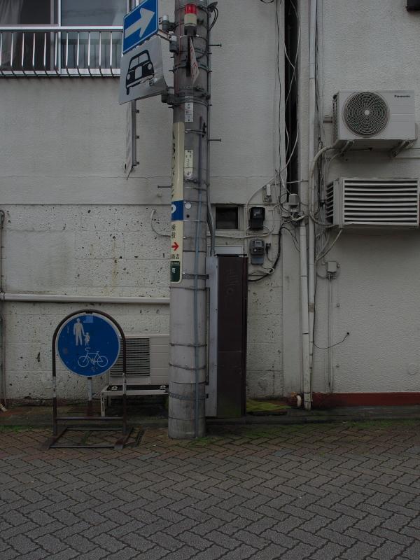 P1647842.jpg