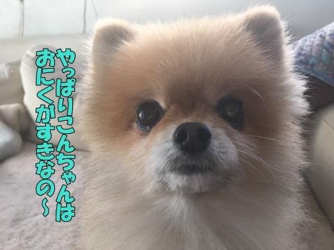 image218120101.jpeg