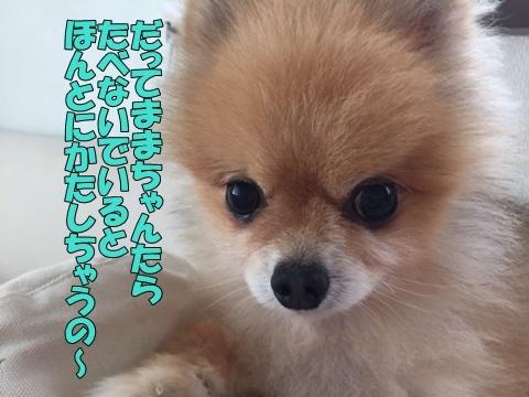image318101301.jpg