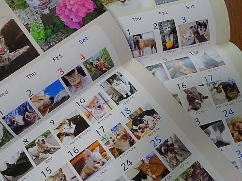365ワンコ・ニャンコカレンダー