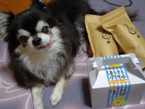 doriさんからプレゼント